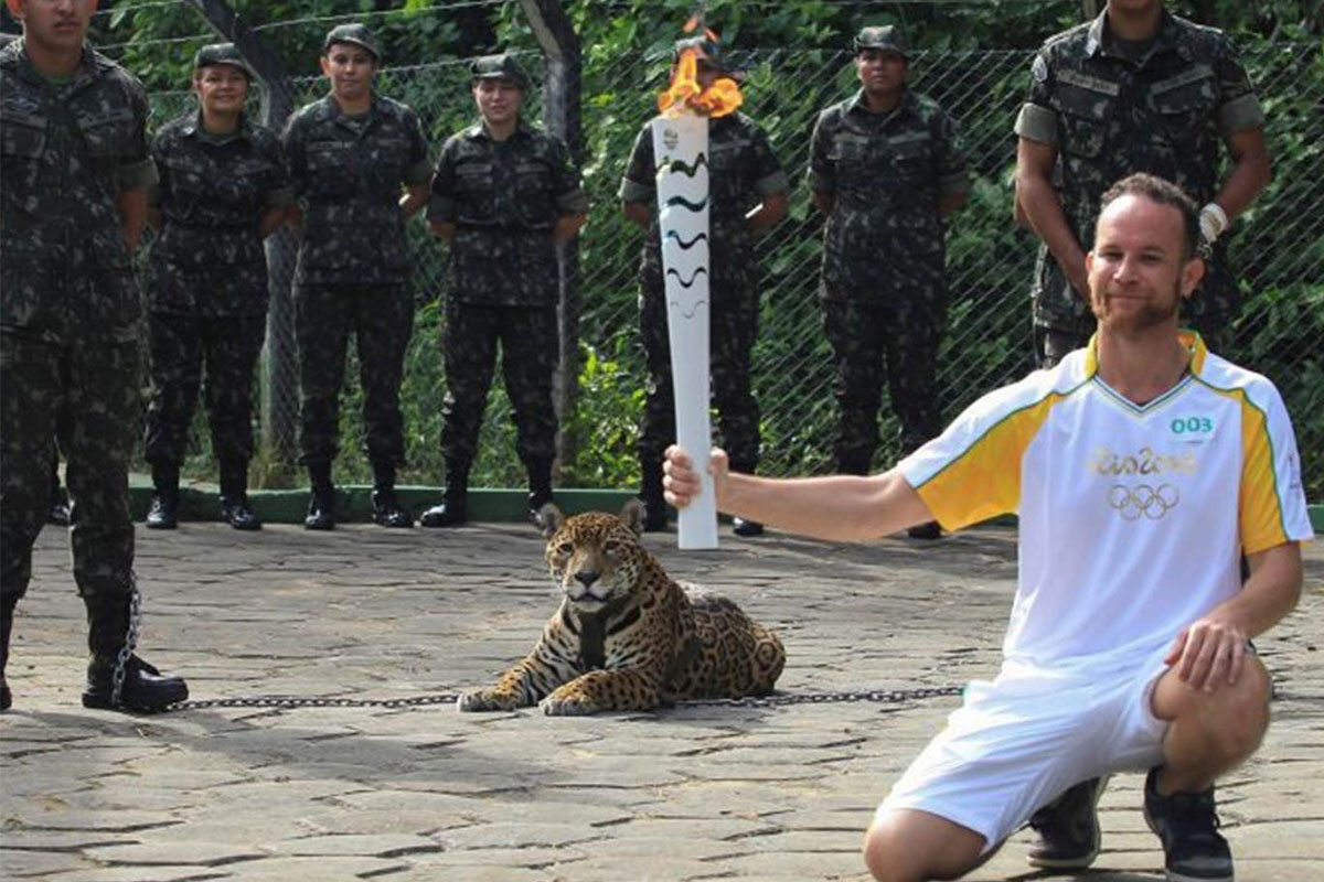 olympic jaguar