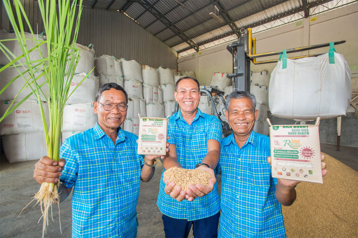 tesco lotus showcases projects people and rice