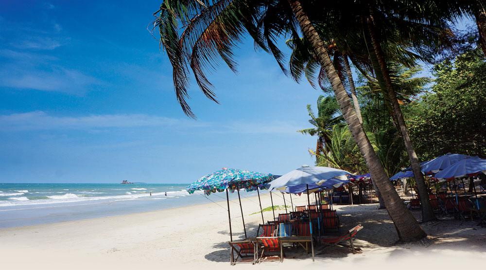 mae phim-beach coconut