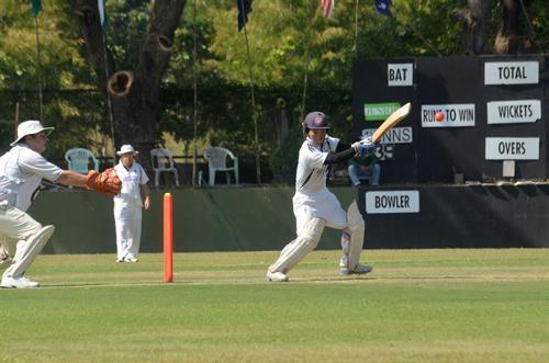 cricket is life