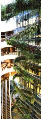 Supaluck-Umpujh-mall-with-nature