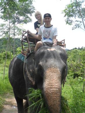 A Lithuanian-in-Bangkok-Elephanp