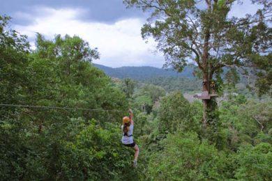 flight-gibbon-bangkok-thailand
