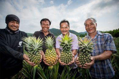 tesco-lotus-showcases-projects-people-and-pineapples
