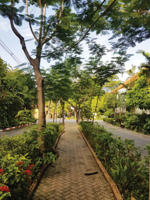 living in nichadathani-main way