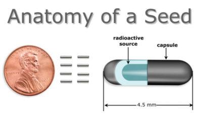 the titanium seed structure