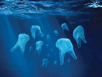 jelly plastic