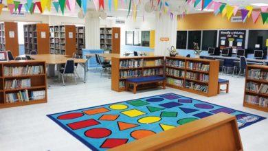 dr john library