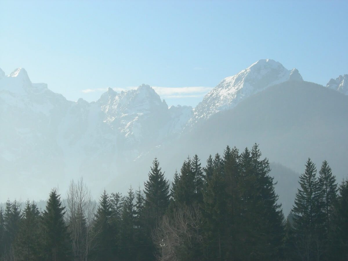 The Mountain-view