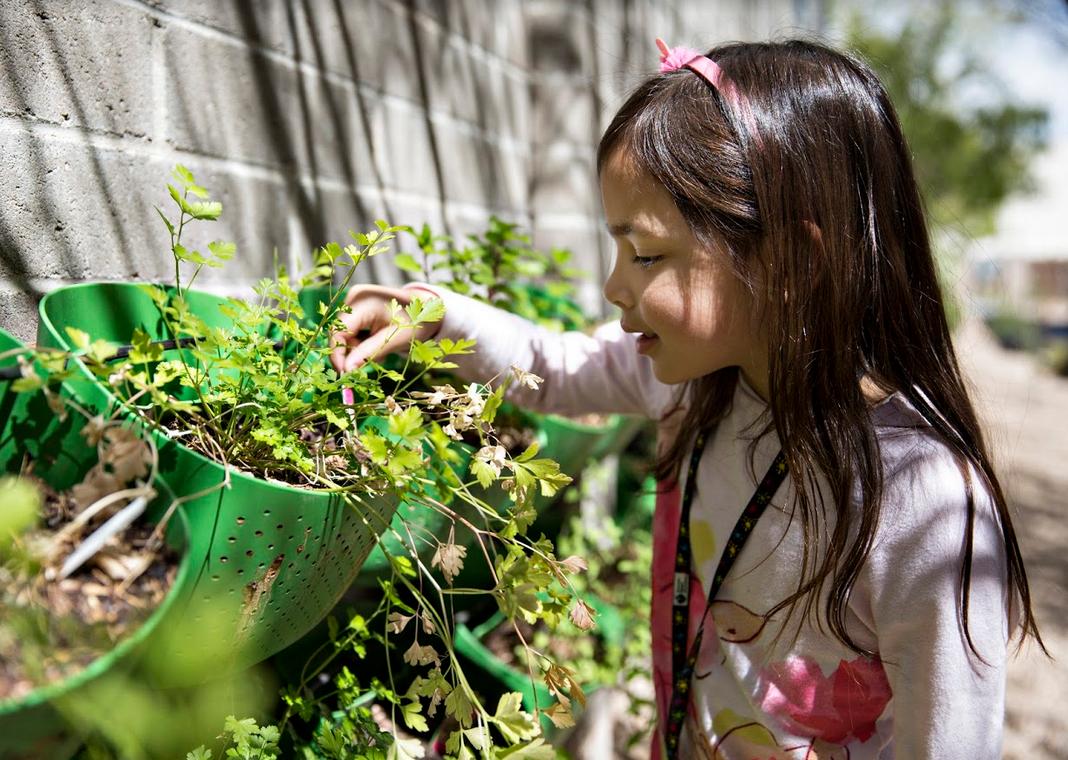 Child learns gardening