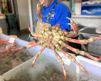 Fresh Crab at Redondo Pier Fish Market