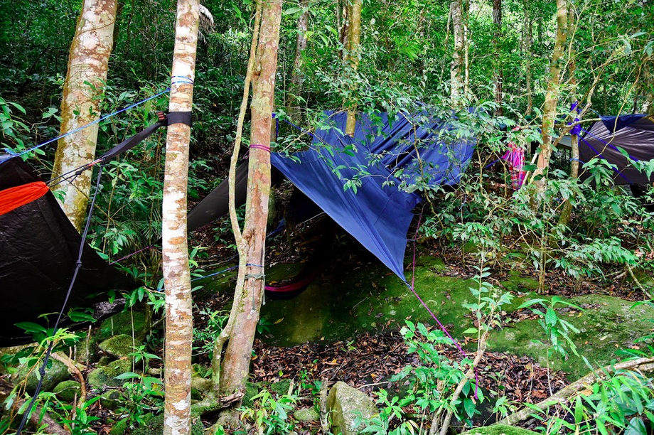 Sleeping in tents in the jungle.